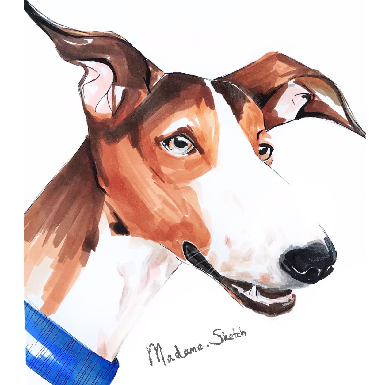 Madame.Sketch.Dog